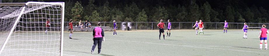 Womens adult soccer game